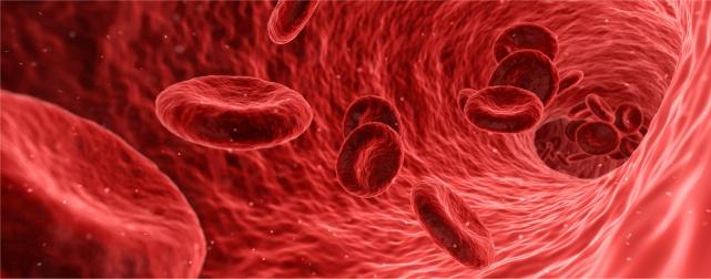 Blutstammzellen
