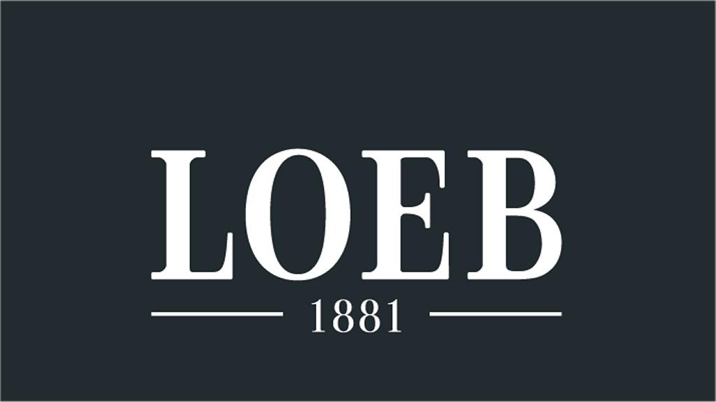 Loeb Holding